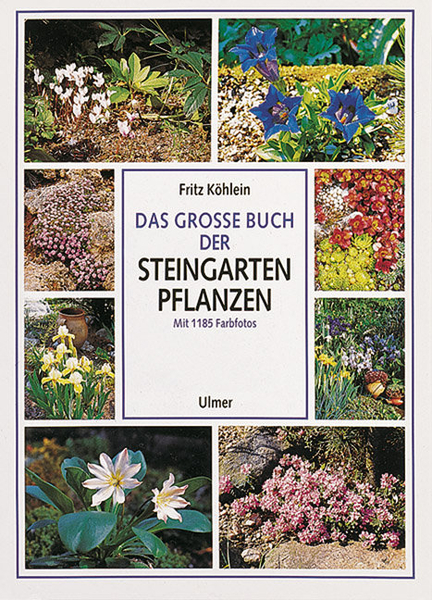 Steingarten Anlegen Bücher : Steingartenpflanzen Steingarten Pflanzen Pictures to pin on Pinterest